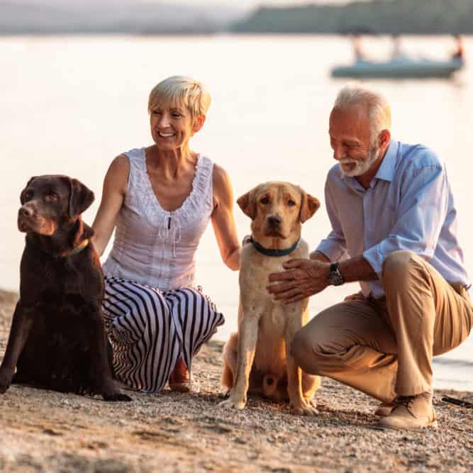 Shot of a happy senior couple playing with their dogs on the riverside